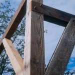 Timber frame from reclaimed lumber from a decommissioned dairy barn. Mortise and Tenon joinery.